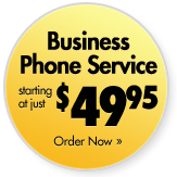 TrueRing Business Phone Service, Just $49.95
